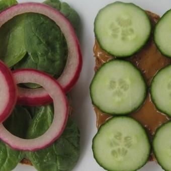 Garden Sunflower Sandwich