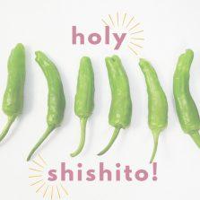 Shishito peppers.