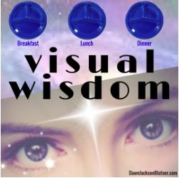 Visual Wisdom Challenge